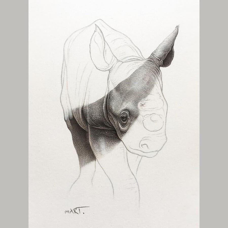 04-Baby-Rhino-Martin-Aveling-Animal-Portraits-www-designstack-co