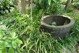 等々力渓谷内の日本庭園です。