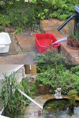 Rain overflow