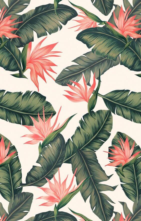خلفيات جديدة - Wallpapers