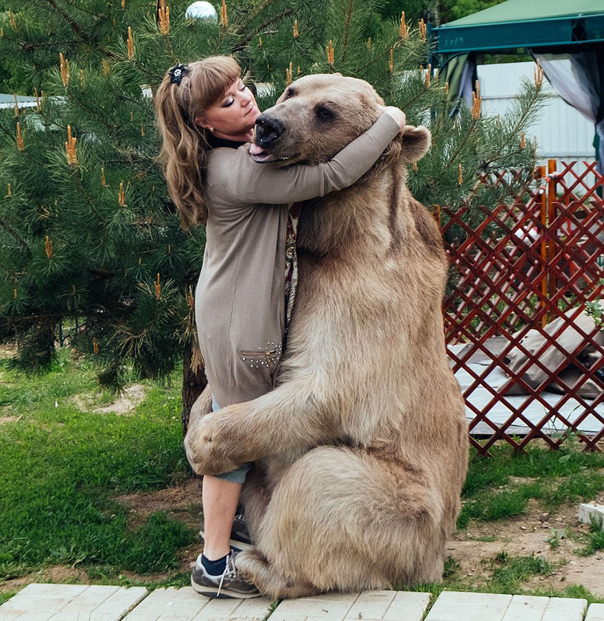 Russian Couple Adopted An Orphaned Bear 23 Years Ago, And They Still Live Together - But Svetlana and Yuriy nurtured him back to health