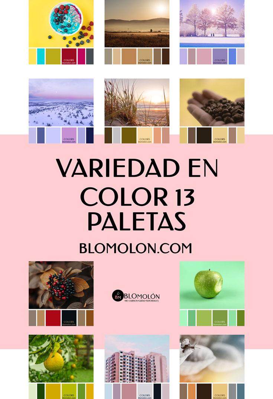 variedad_en_color_blomolon_13