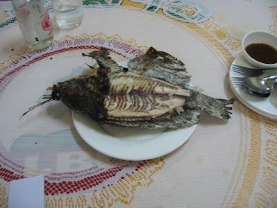 mekong balığı