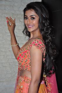 Pooja Jhaveri Hot Photos In Pink Dress
