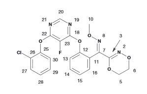 Organic Synthesis International: Fluoxastrobin