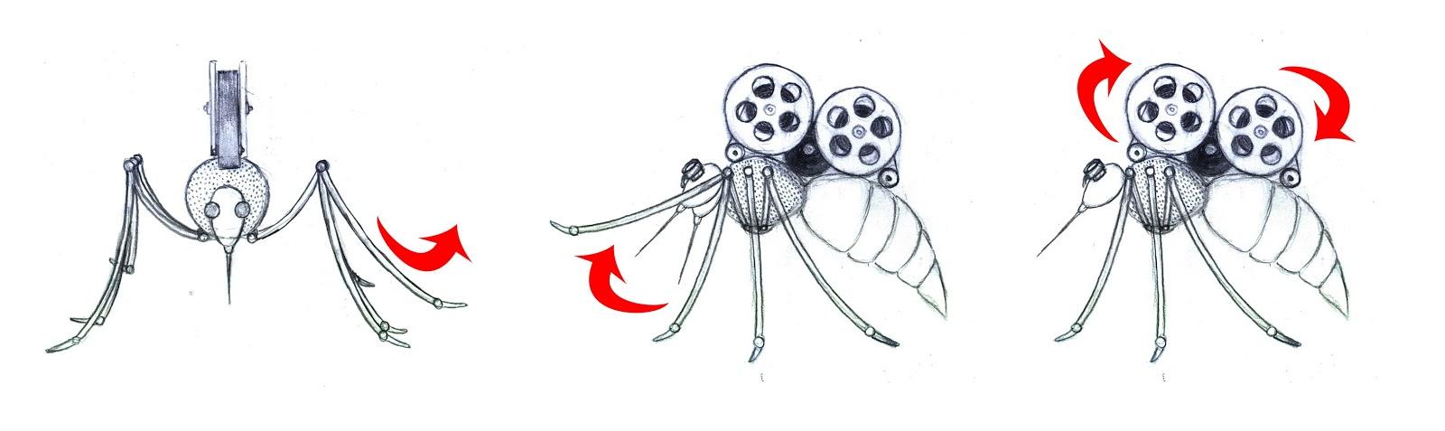 3d Modelling And Animation Marina Voronova Mosquito