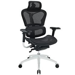 Popular Office Chair