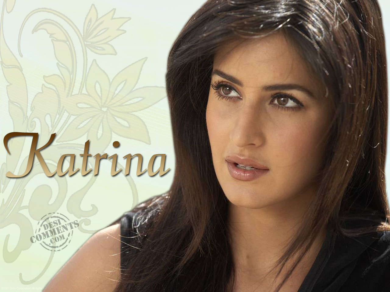 Top Hd Bollywood Wallapers Katrina Kaif Cute Wallpaper-2719