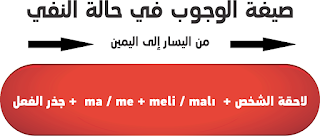 صيغة الوجوب في حالة النفي في اللغة التركية