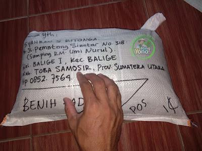 Benih Padi TRISAKTI Pesanan  SYAHBAN S RITONGA Toba Samosir, Sumut   (Sesudah di Packing)