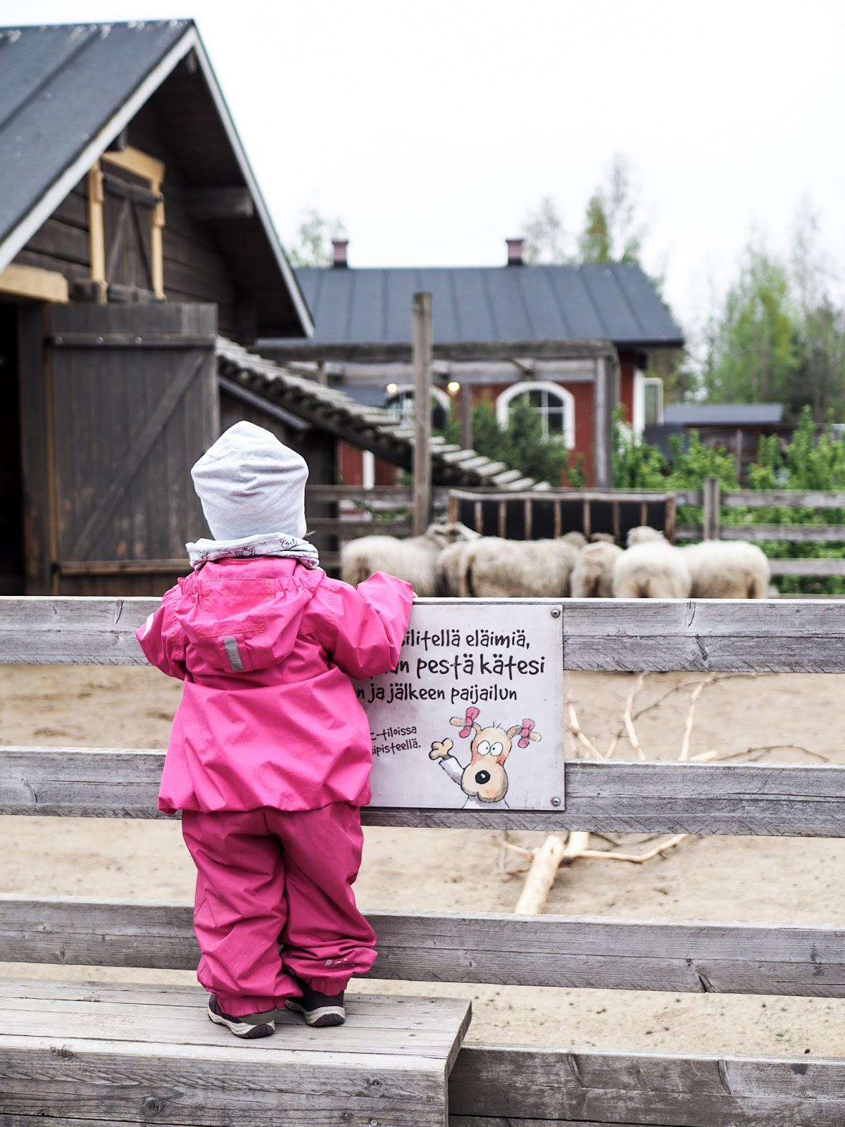 Koiramäen eläinpuistossa pääsee silittämään eläimiä