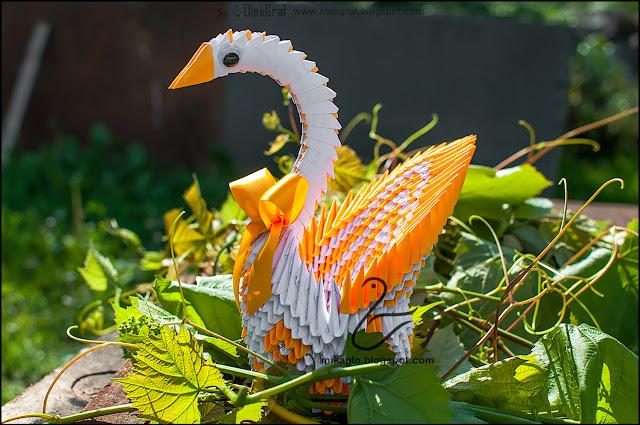 567. Łabędź z origami / 3d origami swan
