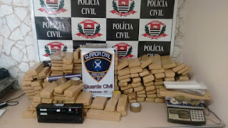 Guarda Civil de Piracicaba e Dise apreendem 190 quilos de maconha em reintegração de posse