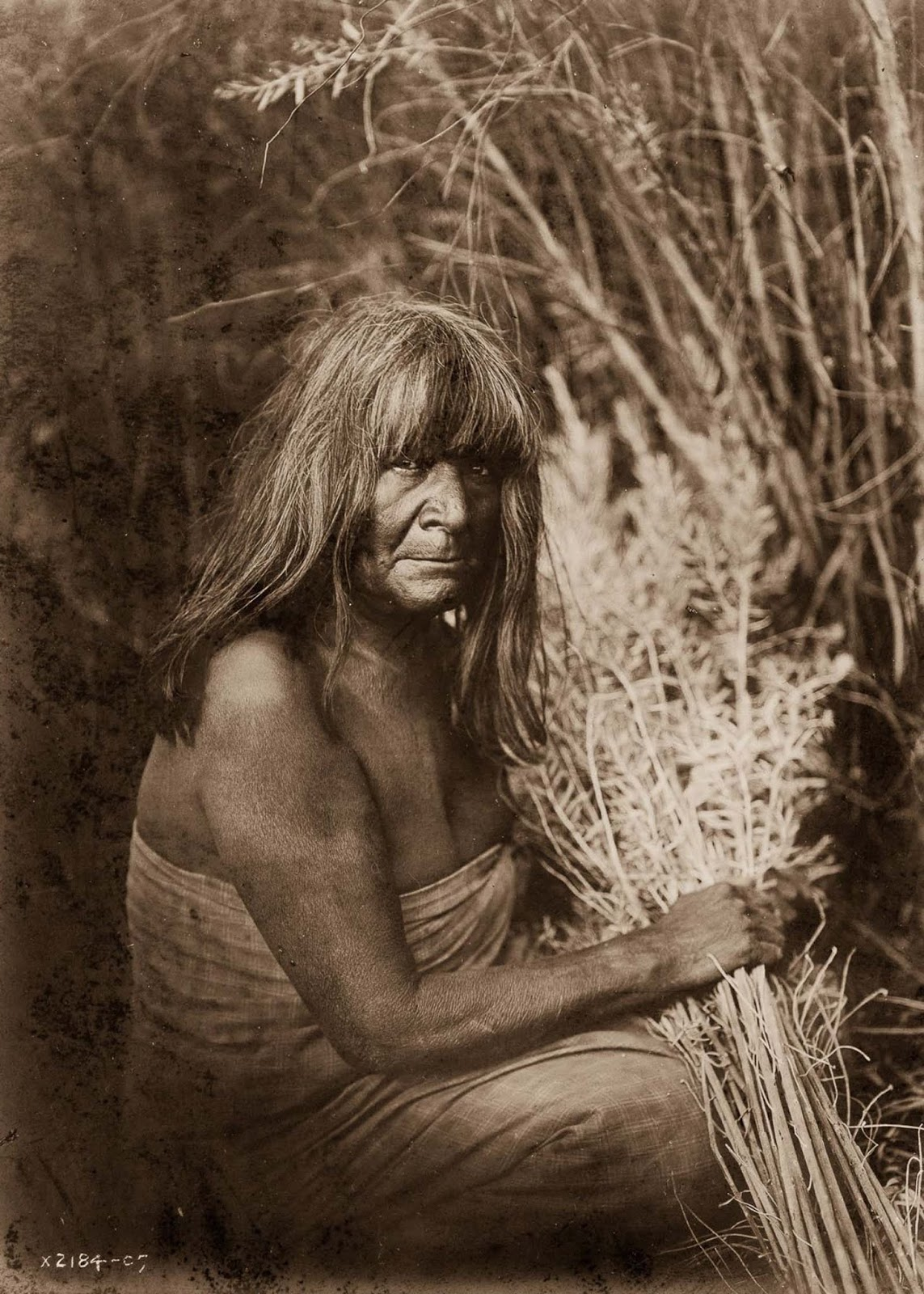A Maricopa woman with arrow-brush stalks. 1907.