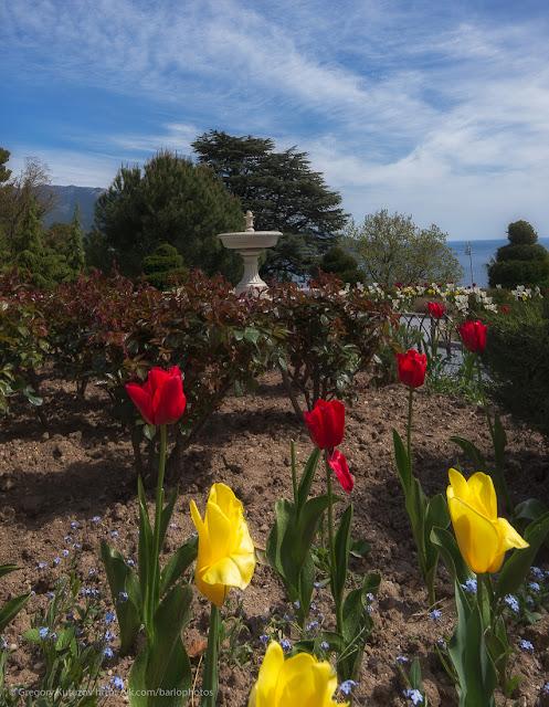 парк у Ливадийского дворца