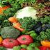 Sektor Pertanian Indonesia dikuasai  dan di Monopoli Amerika Serikat  untuk  Proyek GMO