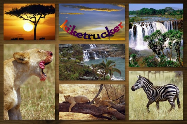 Wallpapers Africa Salvaje HQ
