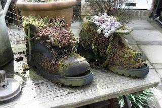 Procedimiento para realizar maceteros con zapatos viejos para interiores