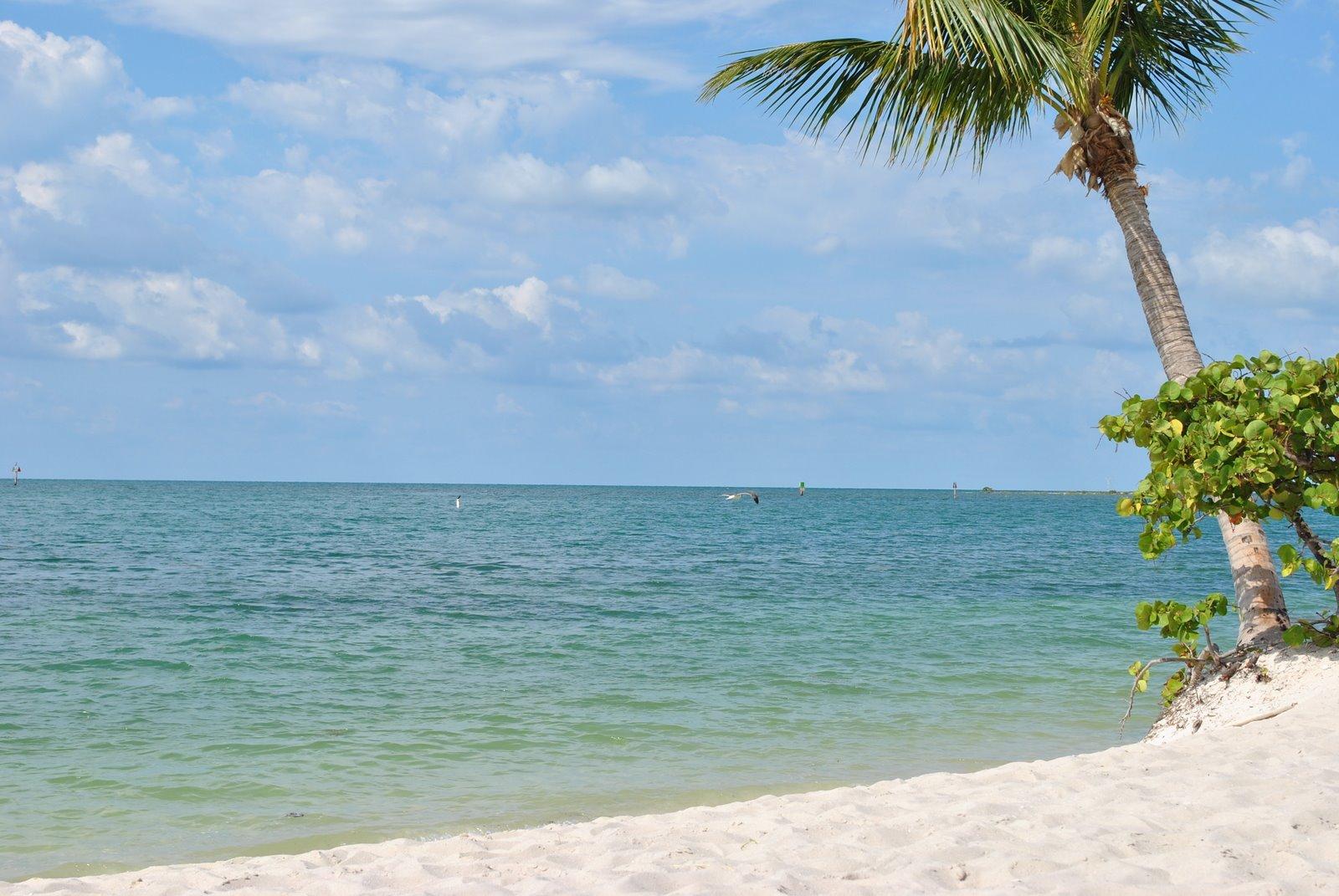 Sombrero Beach Keys The Best Beaches In World