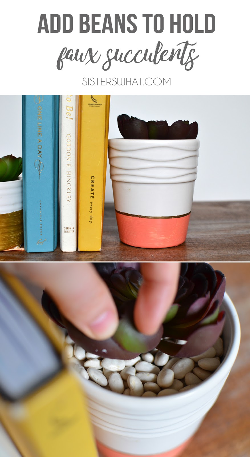 use beans to hold faux succulents in a succulent pot