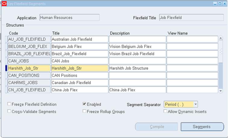 Oracle Apps HRMS : Demo Implementation Project