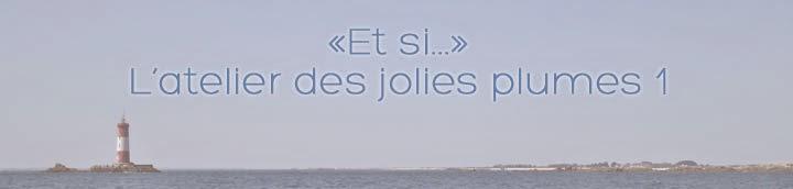"""l'atelier des jolies plumes """"et si"""""""