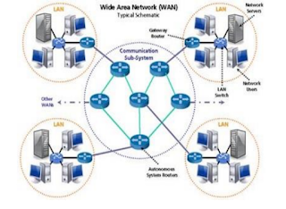 Wide Are Network