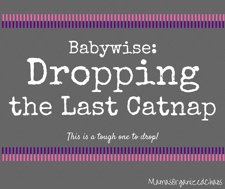 babywise dropping the last catnap