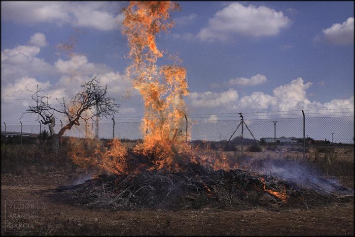 fotografia,fuego,campo,