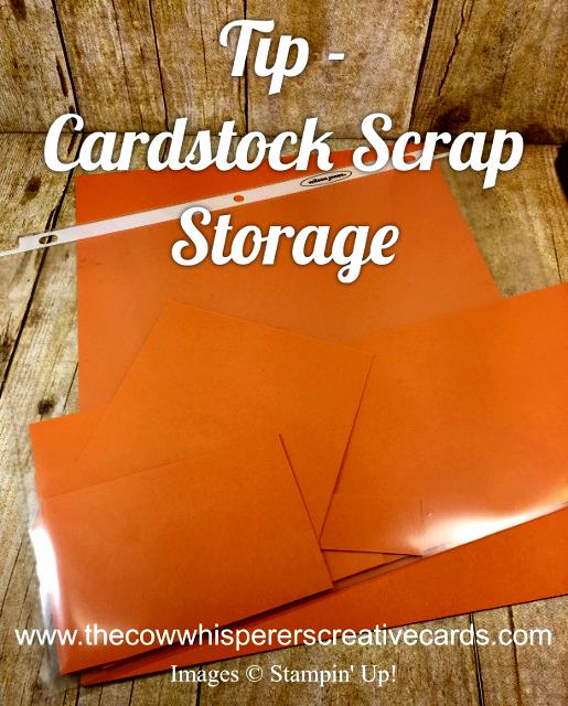 Tip, Cardstock, Scraps, Organize, Storage
