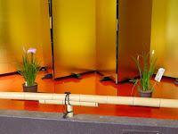 城北菖蒲園の展示棟(平鉢・盆養)