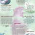 Pink Amazon River Dolphin Facts