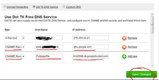 Dot TK DNS Service
