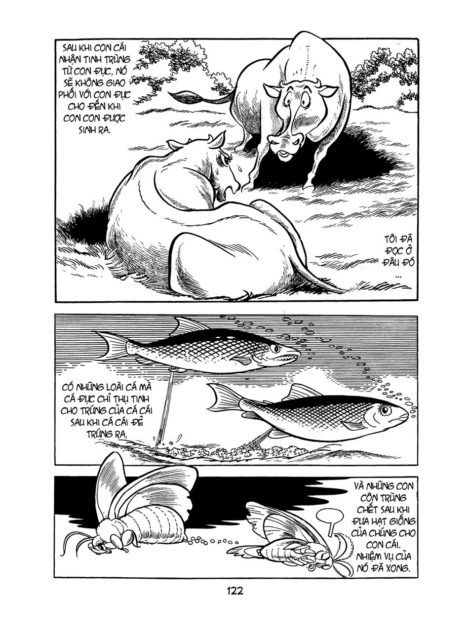 Apollo's Song chap 2.1 trang 43