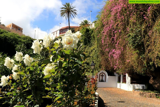¿Conoces la La Fuente de San Juan en Puntallana?