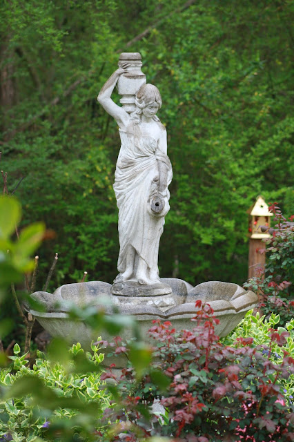 garden, plants, garden statues, ferns, roses