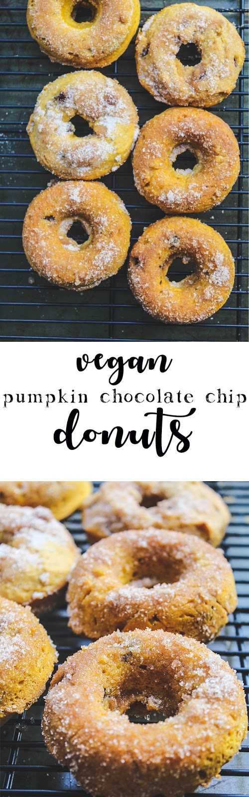 Baked chocolate chip pumpkin donuts with a cinnamon sugar topping are an irresistible fall treat! These vegan donuts are a perfect afternoon snack or dessert. #vegan #bakeddonuts #pumpkin #dessert #donuts