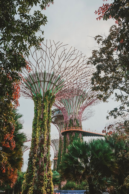 raini travel singapore curitan aqalili