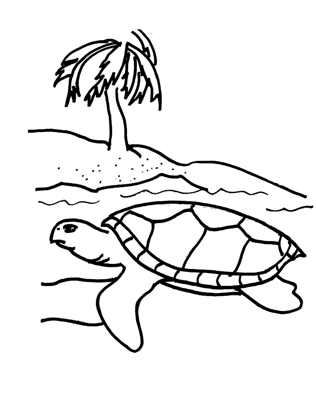 Tranh cho bé tô màu con rùa trên biển