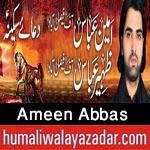 http://www.humaliwalayazadar.com/2015/10/ameen-abbas-nohay-2016.html