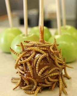 caramel apples maggots: Donald Trump Mexico Wall / 15,000 Mile Food Court Wall: 8 Food Funneree Choices