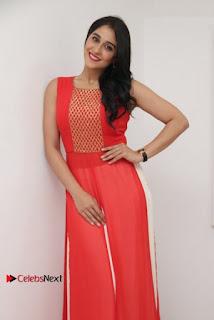 Actress Model Regina Candra Latest Pos in Beautiful Red Dress  0013.jpg