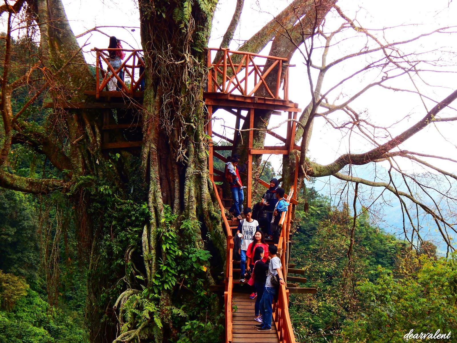 Dearvalent Traveling Rumah Pohon Selfieable Di Curug Ciherang