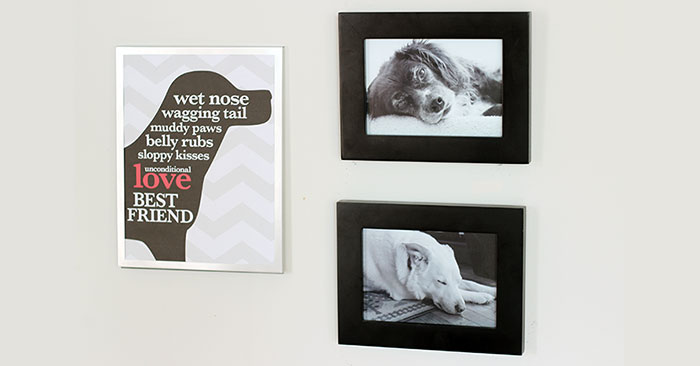 Free Printable Dog Wall Art for Your Pet Accent Wall Sunny Day Family