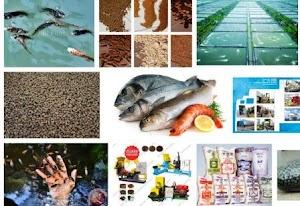 Daftar Produsen / Importir Pakan Ikan / Udang di Jatim