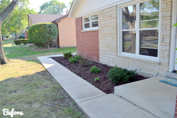 Landscape Makeover- Before