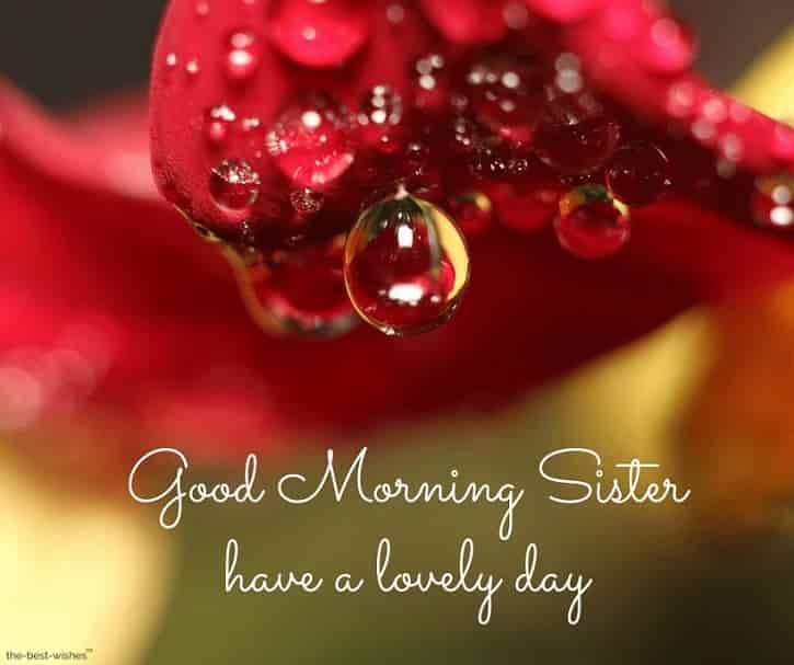 gd mrng sister have a lovely day