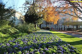Taman Kota Bern
