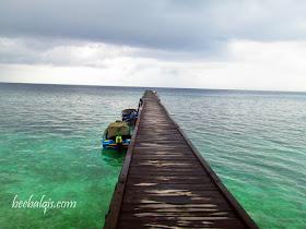 Danau Ubur-ubur tak menyengat di Pulau Kakaban Indonesia