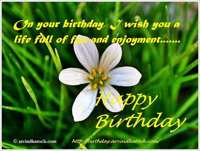 birthday, fun, enjoyment, Happy birthday, card, HD